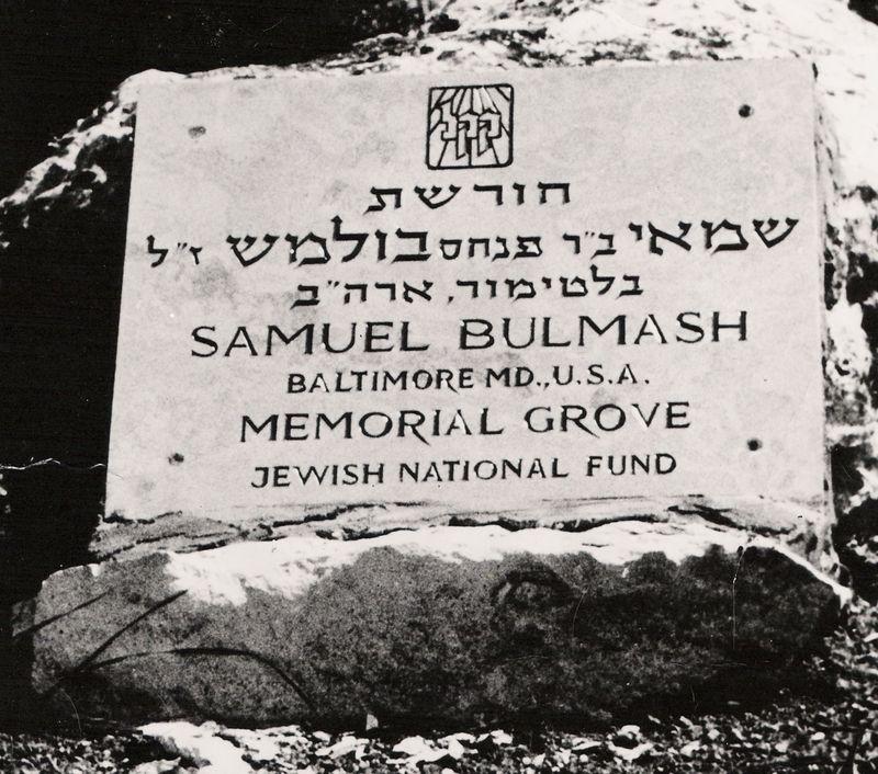 Samuel Bulmash Memorial Grove 2